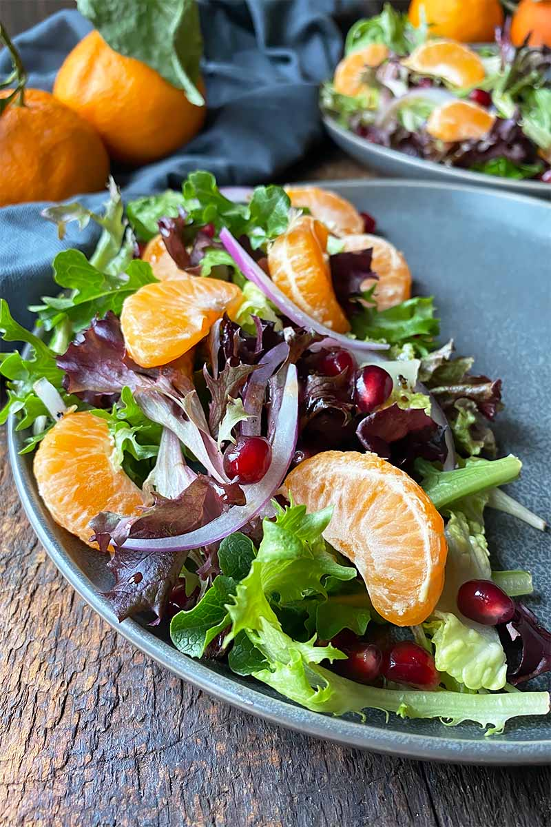 Vertical close-up image of a mixed green salad topped with sliced red onion and orange segments.
