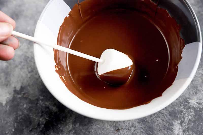 Horizontal image of dipping a marshmallow on a stick in melted chocolate in a bowl.