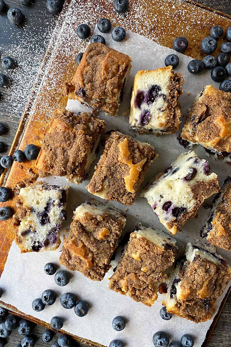 Vertical top-down image of squares of cake studded with blueberries and with a light brown topping.