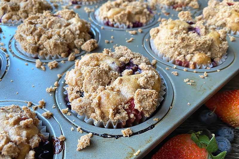 Horizontal image of baked muffins topped with streusel in the pan.