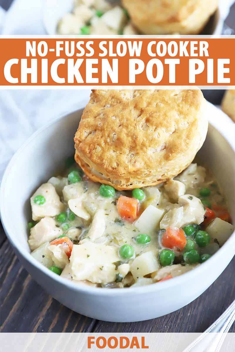 Vertical Image of a white bowl filled with a creamy mixture of vegetables and white meat with a biscuit on top, with text on the top and bottom of the image.