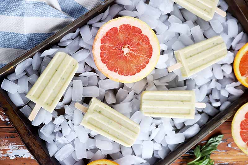 Horizontal image of popsicles on a sheet try with ice cubes next to sliced citrus fruit.