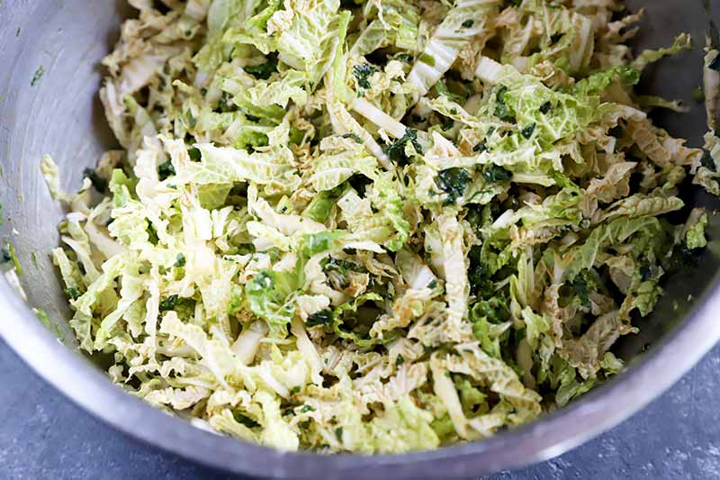 Horizontal image of thinly sliced cabbage mixed in a dressing in a bowl.