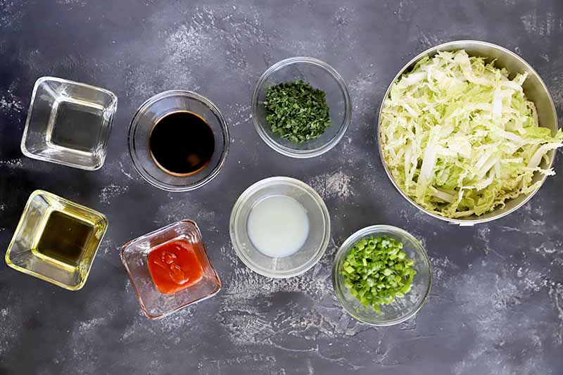 Horizontal image of assorted ingredients measured into small glass bowls and a large bowl filled with shredded cabbage.