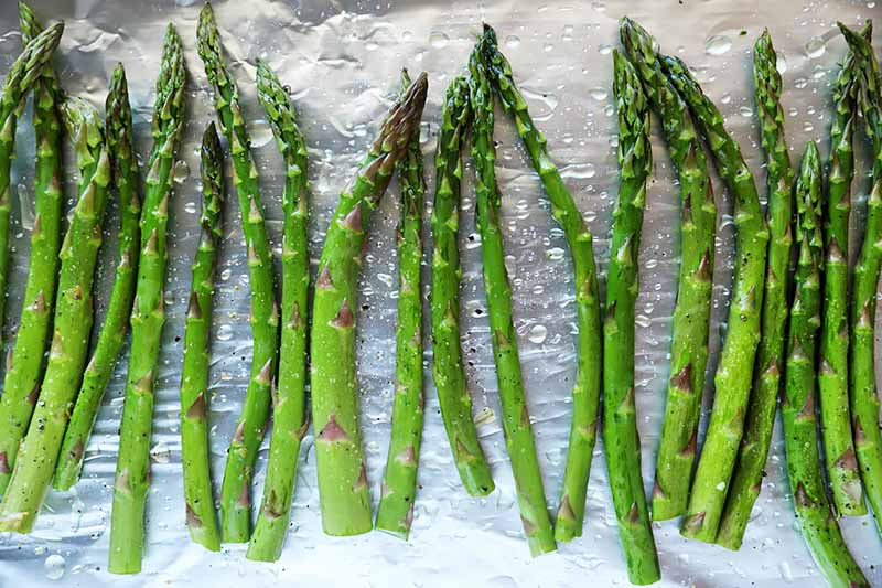 Horizontal image of a row of green vegetable spears on a foil-lined baking sheet.