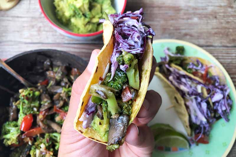Horizontal image of a hand holding a single taco with garnishes.