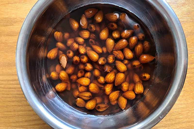 Horizontal image of soaking almonds in water in a bowl.
