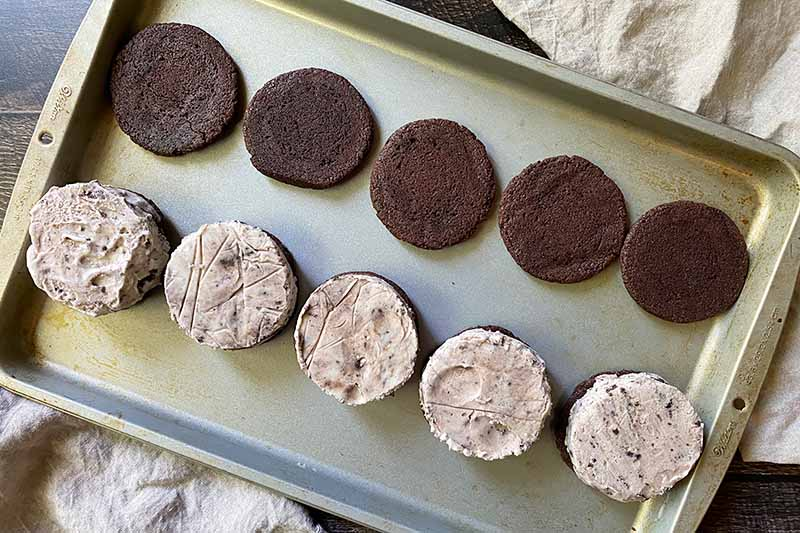 Horizontal image of one row of plain cocoa cookies and another row of circular mounds of ice cream on a baking sheet.