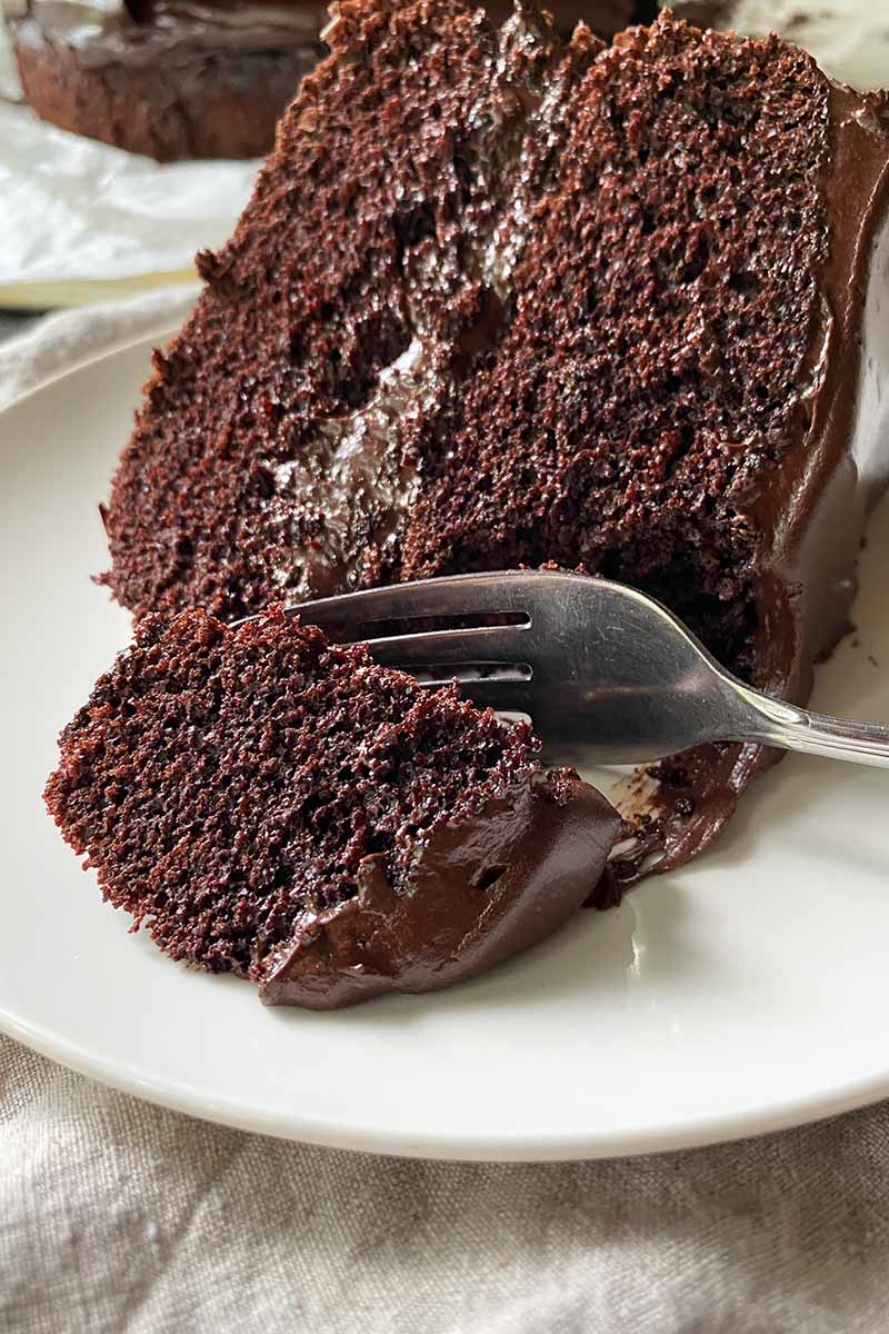 Vertical close-up image of a fork taking a piece of a chocolate cake with fudge frosting on a white plate.