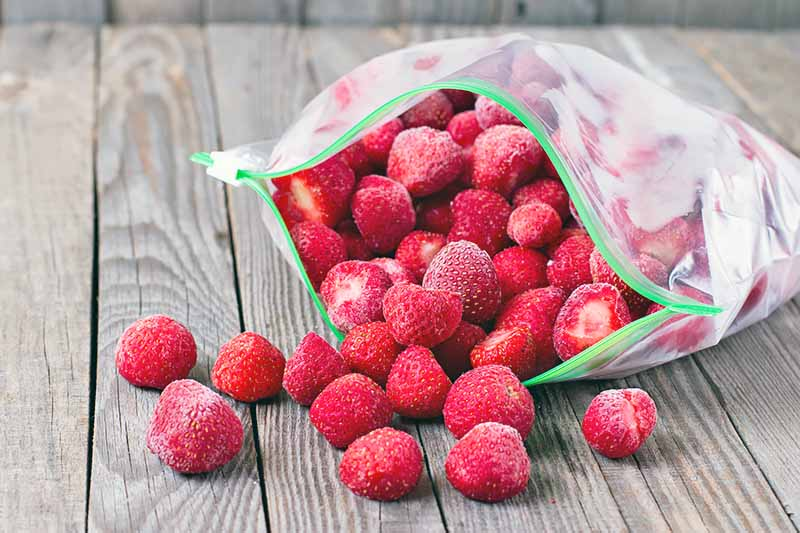 Horizontal image of frozen whole red fruit in a plastic bag with a zip top.