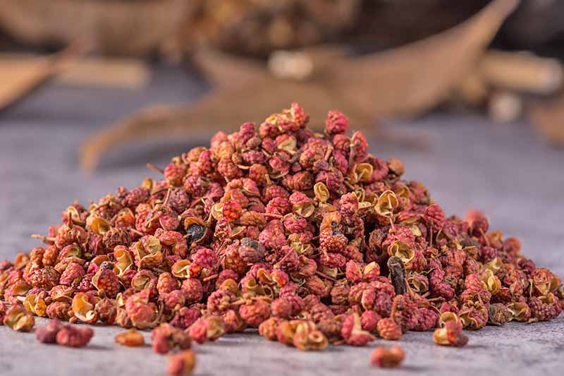 Horizontal image of a mound of dried red peppercorns.