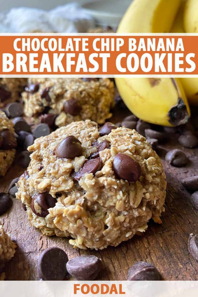 Vertical image of a baked good with oats and candies next to yellow fruit, with text on the top and bottom of the image.