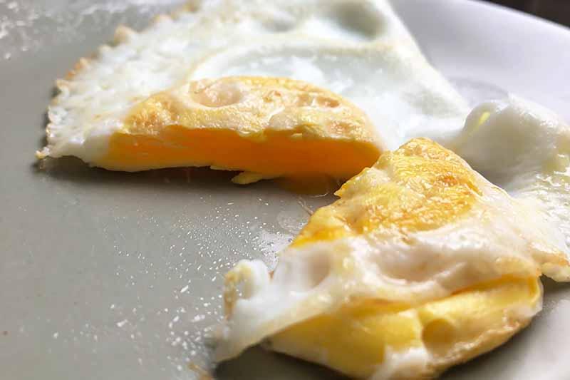 Horizontal image of an over-hard egg on a gray plate.