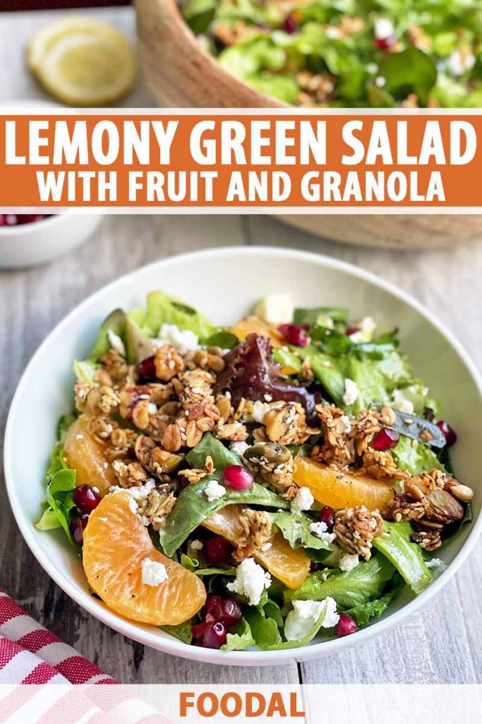 Vertical image of a white bowl filled with greens, orange segments, pomegranate seeds, and fresh cheese, with text on the top and bottom of the image.