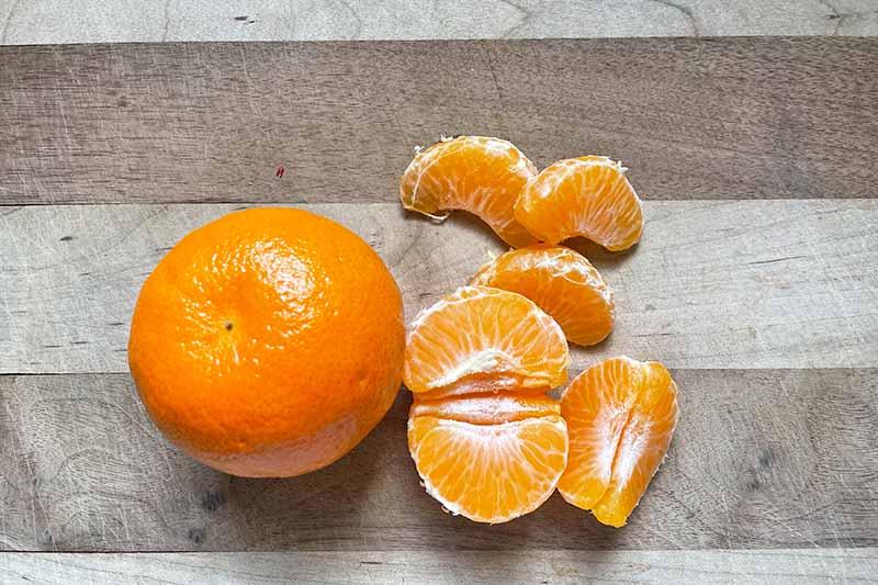 Horizontal image of whole and segmented mandarin orange on a wooden cutting board.