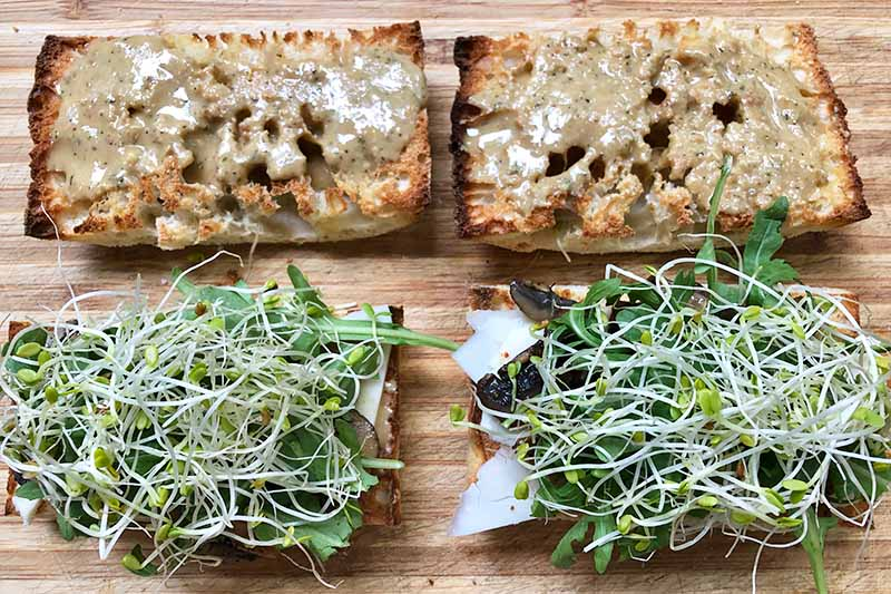 Horizontal image of two slices of bread covered with spread, and another two slices of bread topped with bean sprouts.