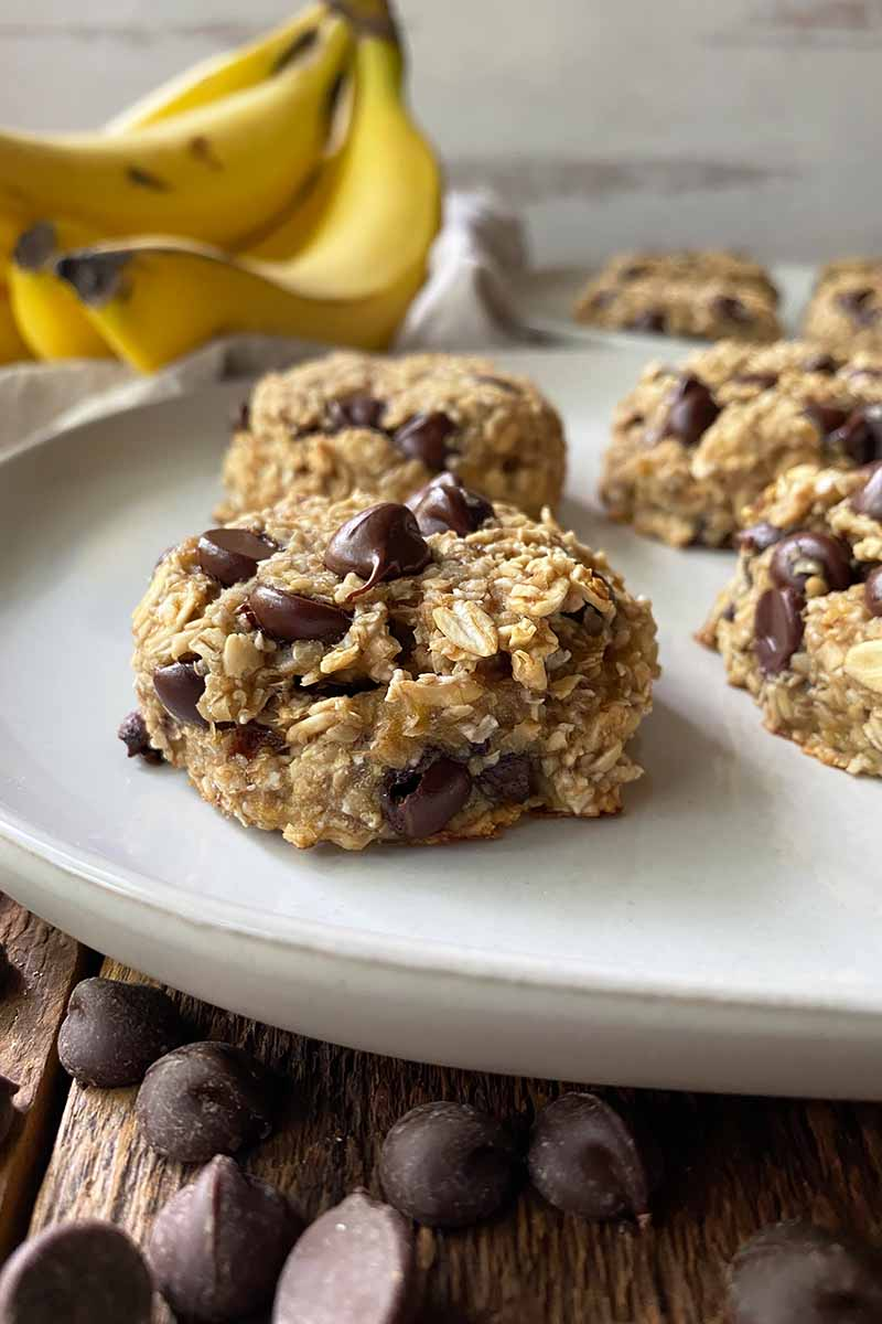 Vertical image of a white plate with baked goods made with oats and chocolate chips in front of yellow fruit.