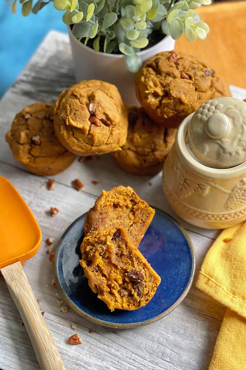 Vertical image of orange-colored baked goods, with one halved on a blue plate next to a jar a vase with plants, a spatula, and an orange napkin.