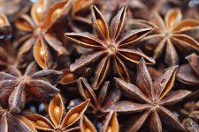 A Spicy Namesake: The Seasoning and Healing Powers of Anise And Star Anise | Foodal.com
