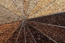 Coffee Bean Roast Levels | Foodal.com