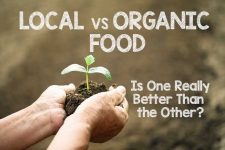 Local vs. Organic Food: Is One Really Better Than the Other?