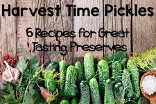Six great homemade pickle recipes | Foodal.com