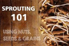 Sprouting 101: Using Nuts, Seeds & Grains   Foodal.com