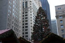 An image of tall Christmas tree against a background of skyscrapers.