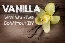 Vanilla: What Would We Do Without It? | Foodal.com