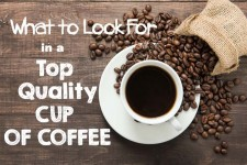 What to Look For in a Top Quality Cup of Coffee | Foodal.com