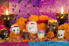 Dia de los Muertos Cover | Foodal.com