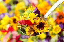 edible flowers 2 | Foodal.com