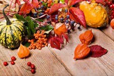 Gourds and Plants to Decorate for Thanksgiving | Foodal.com